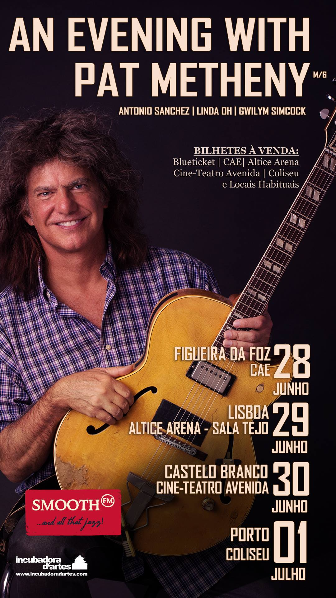 AN EVENING WITH PAT METHENY cartaz face